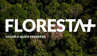 MMA institui programa Floresta+ para remunerar quem protege a mata nativa