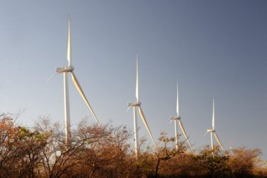 Bahia lidera geração de energia renovável no Brasil